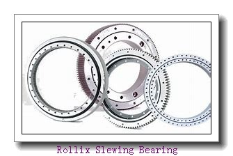 Material handler with high performance double row ball slewing bearing from China