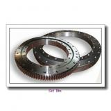 Light Series Slewing Ring Bearing with Flanges